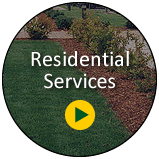 Commercial Landscape Maintenance LV